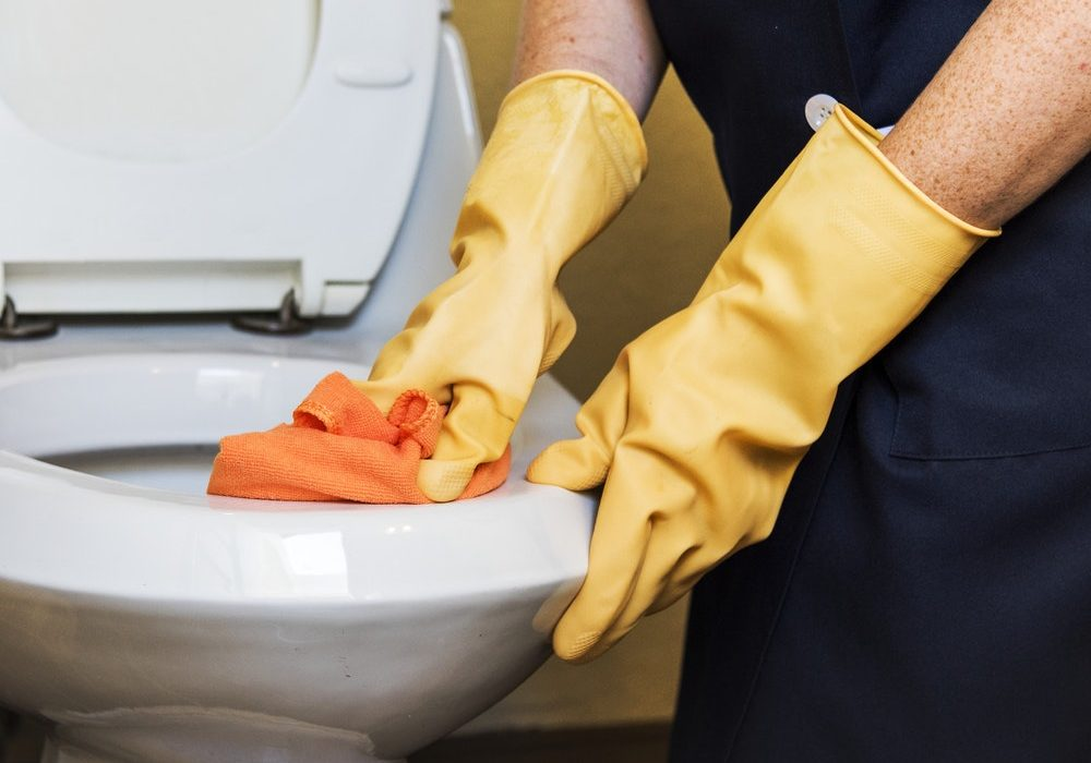 How to Clean Toto Toilet