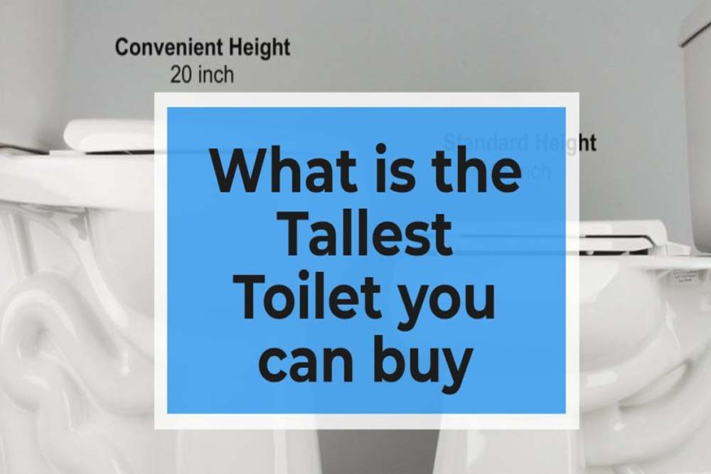 What-is-the-Tallest-Toilet-you-can-buy