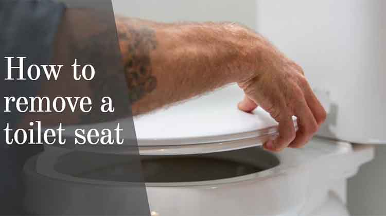 How to remove a toilet seat